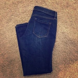 LOFT jeans - Modern Straight - Size 8P